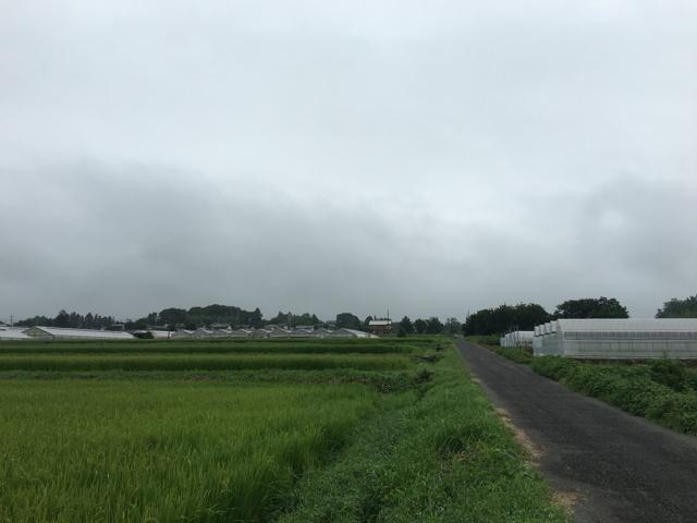 8/28 今朝の赤城山